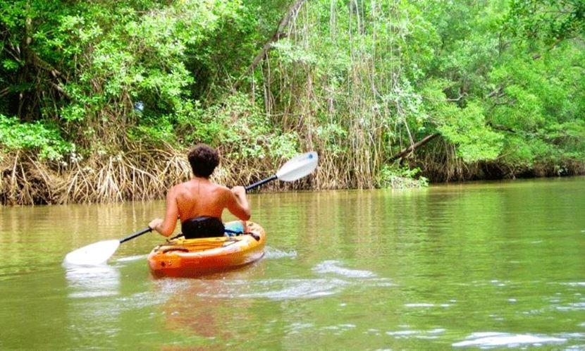 Voyage au Costa Rica: des aventures pour petits et grands!