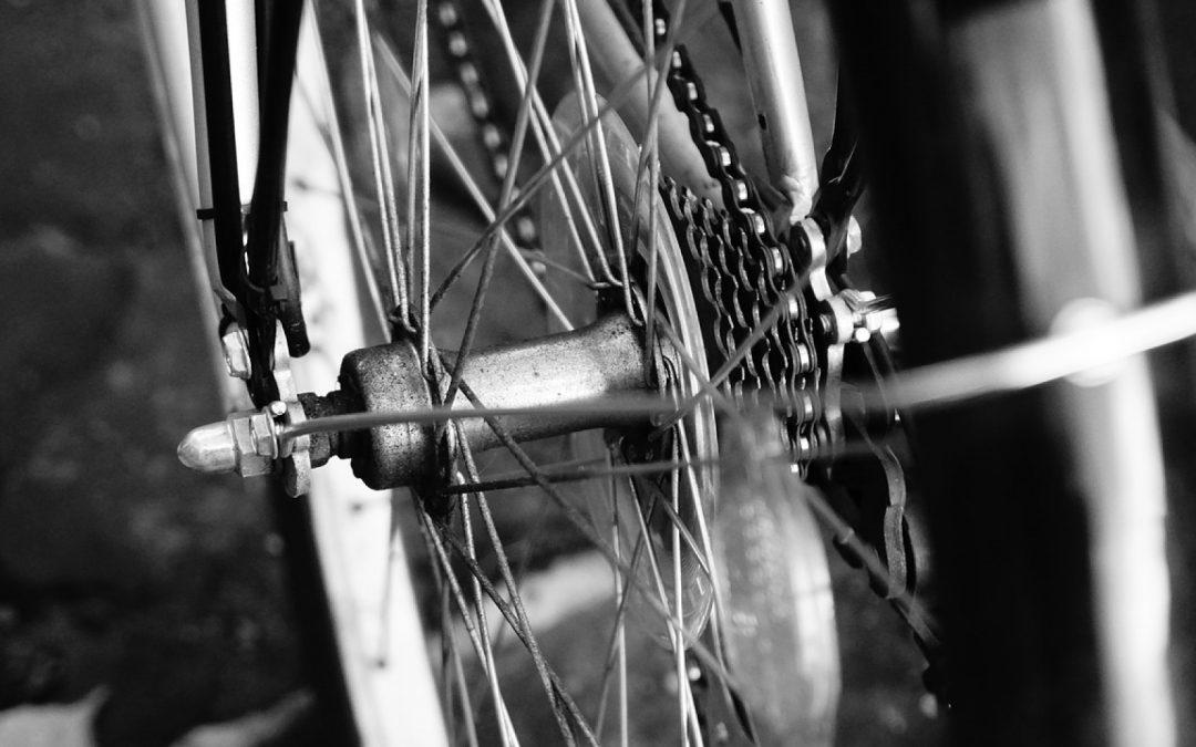 Vélo des villes, vélo des champs, vélo pour tous
