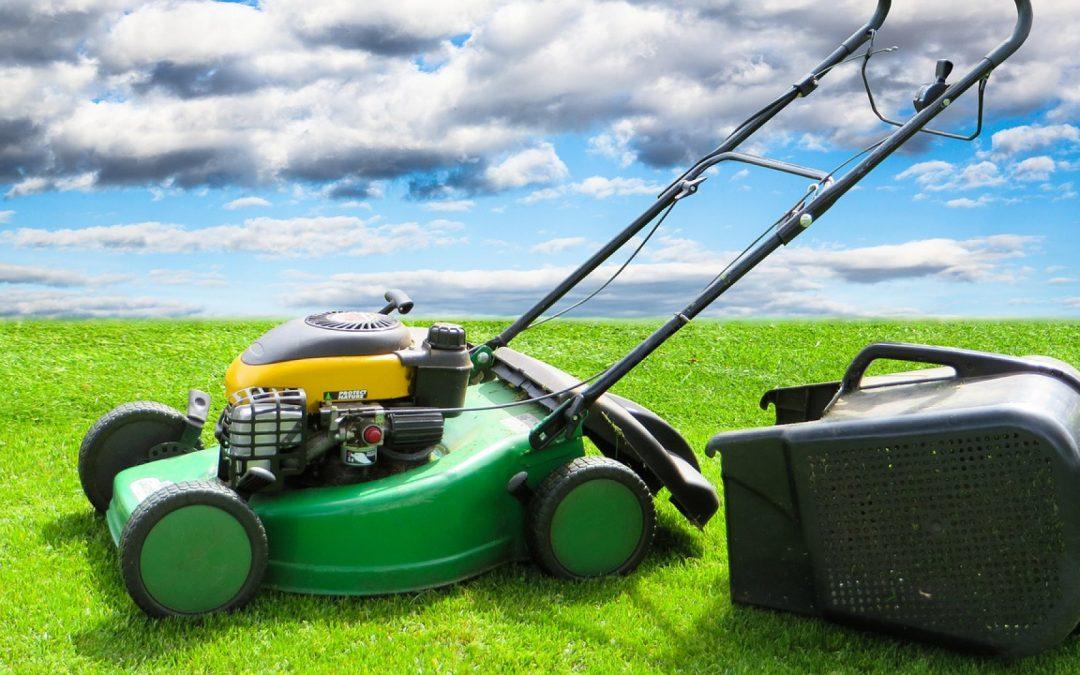 Pensez à réparer vos outils de jardinage avec des pièces détachées commandées en ligne