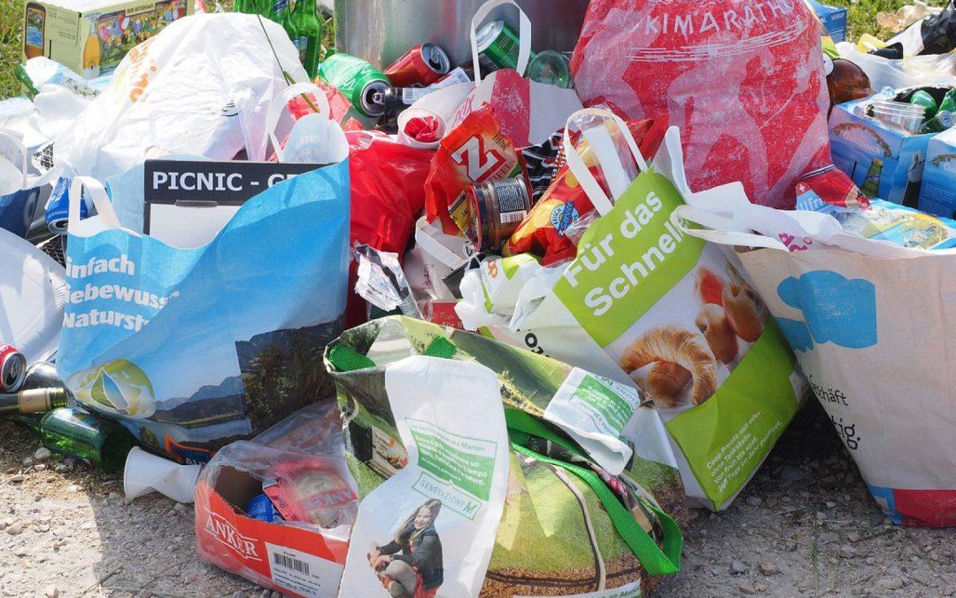 La poubelle se dévoile au grand jour dans votre cuisine