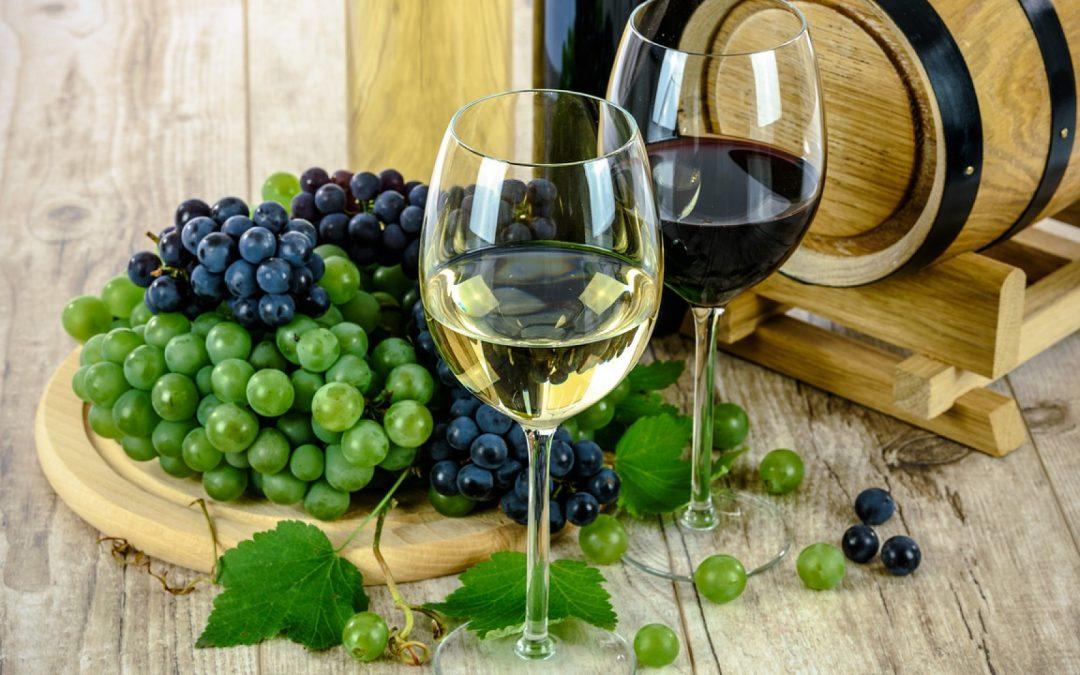 La Cité du Vin : une destination touristique et culturelle