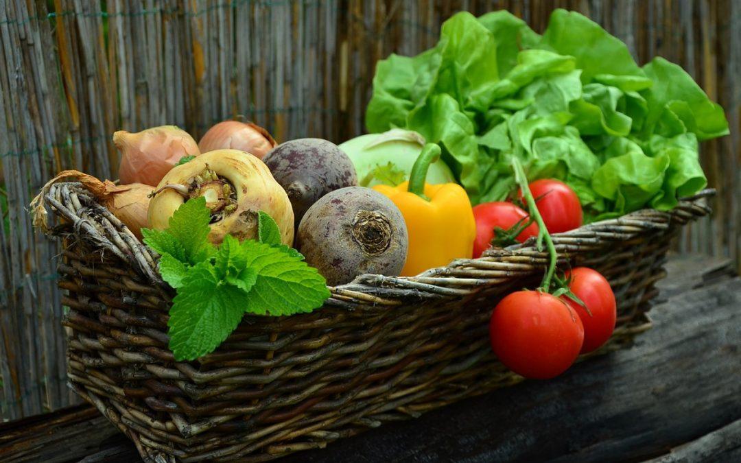 Bien équilibrer sa salade composée
