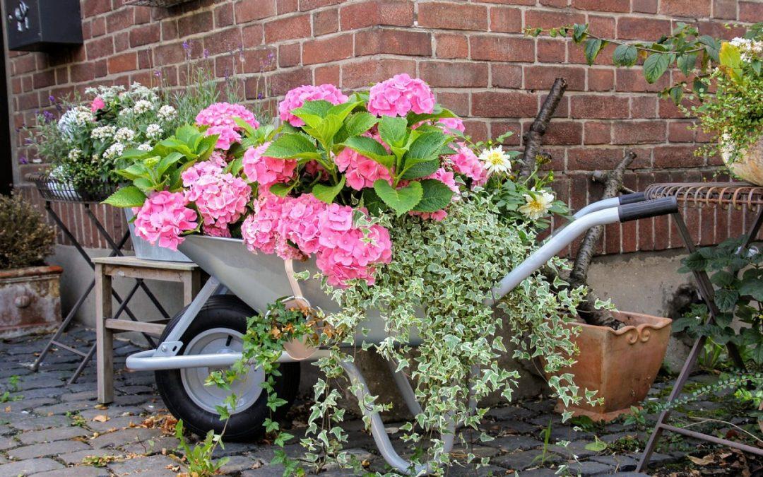 Été et jardinage : il faut savoir bien choisir sa brouette!