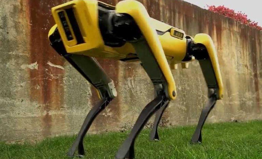 Spot, le robot-chien de Boston Dynamics sera bientôt disponible à la vente